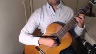 Secunda - The Elder Scrolls V: Skyrim on Guitar