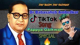 Dr Babasaheb Ambedkar ||  Tik TOK Song || Pappya Gaikwad Special ||