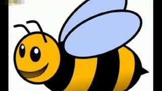arı vız vız vız arı vız vız vız geldi ilk bahar şarkısı song videosu