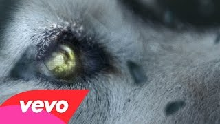 David Guetta - Titanium ( ACOUSTIC/INSTRUMENTAL REMIX )