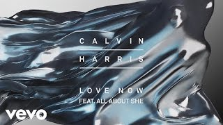 Calvin Harris - Love Now [Audio] ft. All About She