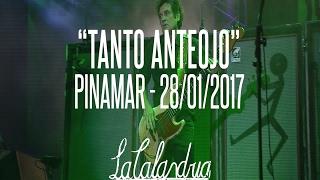 DIVIDIDOS - Tanto Anteojo. Pinamar 28/01/2017
