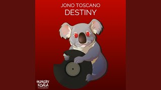 Destiny (Original Mix)