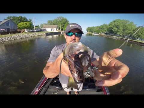 Michigan Bass Fishing