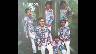"""ACAPULCO TROPICAL  """"El Caracol"""""""