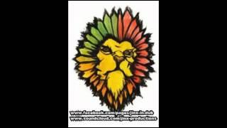 Stephen Marley  - Traffic Jam - Jinx In Dub - Traffic Jammin Remix