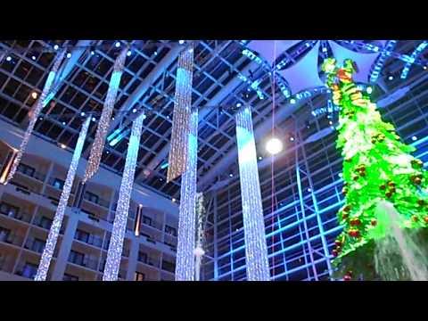 Benjamin Olivas  – Tree Lighting Gaylord National Harbor Resort