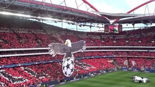 Benfica - Bayern | Hino | Champions League