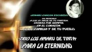Genaro Chacón. Trio Los Amaru de Tinta - Intro.flv