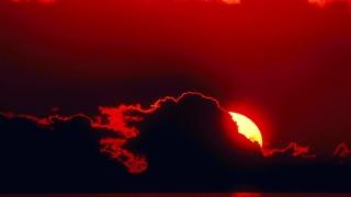 Die Flippers - Die rote Sonne von Barbados - cover