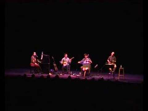 the-magnetic-fields-born-on-a-train-live-cambridge-2004-factory0utlet
