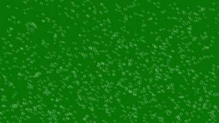 Bubbles #5 - 4K Green screen FREE high quality effects