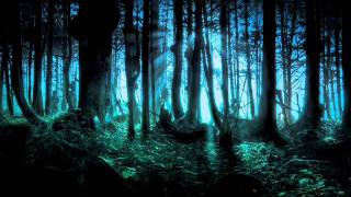 Frederic Chopin - Mysterious Forest