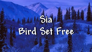 Sia - Bird Set Free (Lyrics) - Music