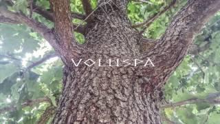 Voluspa - Sjøhof Cover -