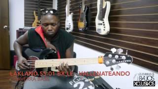 ¡Chaverra Bass con el 55-01 BX!