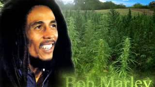 Bob Marley Bad Boy