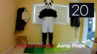 Lazy Panda 4 Minute Workout #12