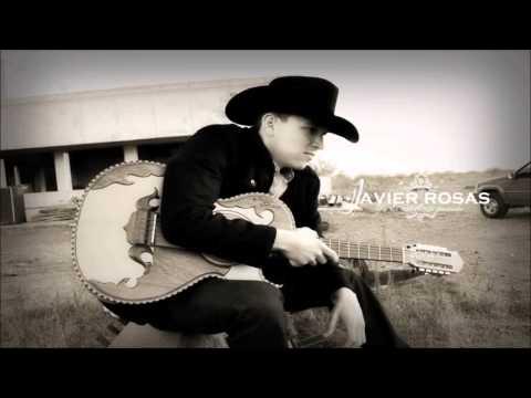 Te Tengo Bien Odiada de Javier Rosas Letra y Video