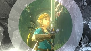 Breath of the Wild AMV/GMV - Battle Scars (Reprise)
