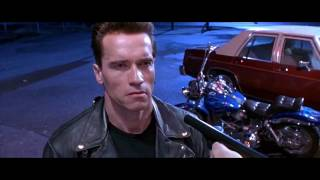 The Terminator - Fat Boy - Harley-Davidson motorcycle