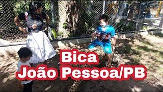 Bica - O Zoológico de João Pessoa- PB