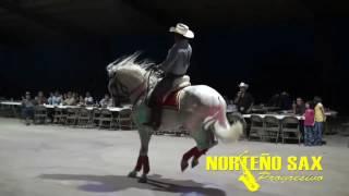El Son de Los Viejitos- Marco Flores y La Banda Jerez