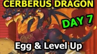 CERBERUS DRAGON Dragon City Egg and Level Up in Dungeon Island Habitat DAY 7