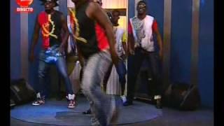 Dog Murras - Chacule bum dance