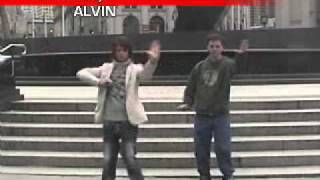 ALVIN - DOMINO (REVERSED)