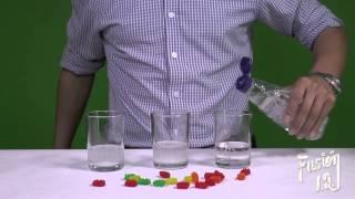 Fusión I.Q. 14 Soluciones Ácidas y Saturadas (Gomitas Locas)