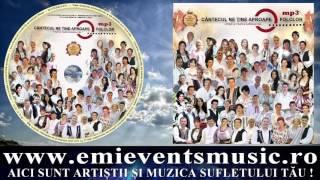 Florin Bordeianu - Ginerica tine pasul (Official audio)