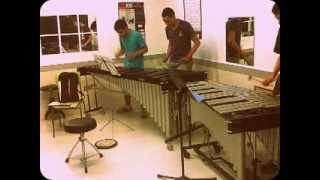 -More than friends- Daddy Yankee MARIMBA COVER