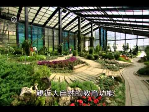 植物的功用 - YouTube