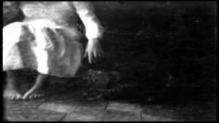 Insomnium - The Swarm