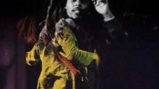 Bob Marley - Punky Reggae Party, Live in Shelton '78
