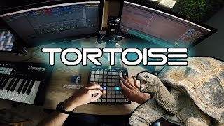Tortoise - Giulio's Page Original - Launchpad MkII Live EDM / Dubstep