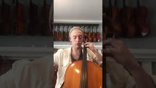 Cello Video   Eastman 605 Monty   Doetsch Guarneri
