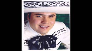 vicente fernandez mujeres divinas javier uribe cover