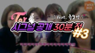 [트와이스/TWICE] 시그널(SIGNAL) 공개 30분 전 #3 feat. 유또막 (with 채영, 사나, 모모, 정연)
