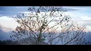 Salinas y La Presencia Reggae - FRENTE A TI teaser