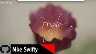 [Lyrics+Vietsub] FRAGILE - gnash ft wrenn