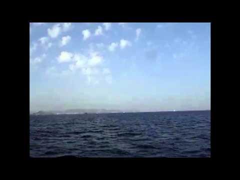 Quiero Viajar de Rosal Letra y Video