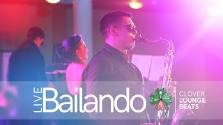 Clover Lounge Beats - Bailando (LIVE)