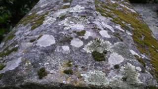 Sarcófagos* de Oubinha, O Salnês, Galiza