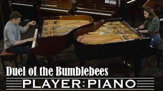 Duel of the Bumblebees - Sonya Belousova feat. Arturo Cardelús (dir: Tom Grey)