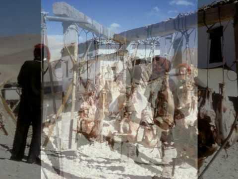Crossing Tibet by Bike: A 2000 mile / 3333 km journey