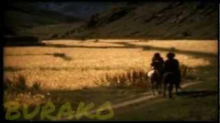Manu Chao - Mentira - Volatil