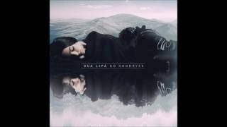 Dua Lipa - No Goodbyes (Instrumental)