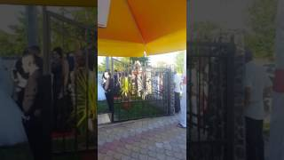 Stelian de la turda-nunta Bogdan&Mia 2